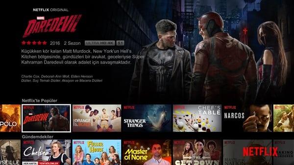 Netflix Nasıl İzlenir?