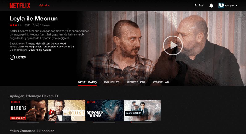 Netflix Yabancı Dizileri